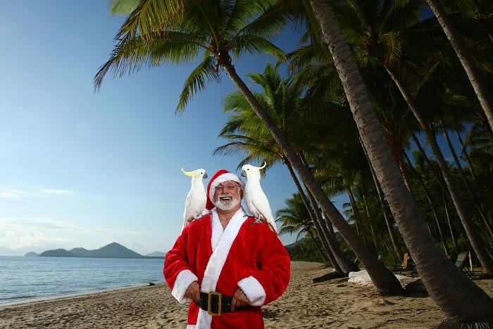 Santa swaps two turtle doves and a partridge in a pear tree for two cockatoos under Queensland's palm trees at Palm Cove Beach.