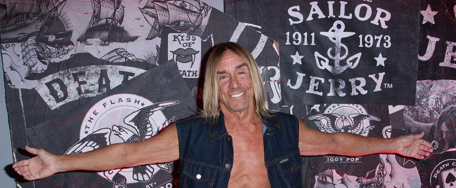 The Flash Collection by Iggy Pop